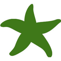 starfish green